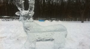 Marvel At Exquisite Animal Ice Carvings During The Ice Safari At Potter Park Zoo In Michigan