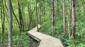 Stroll Along The Scenic Boardwalk Trail Around Sloan's Crossing Pond In Kentucky