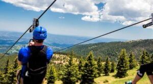 5 Amazing Treetop Adventures You Can Only Have In New Mexico