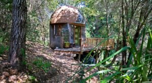 There's A Mushroom Dome Airbnb In Northern California And It's The Perfect Little Hideout
