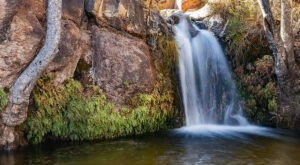 The First Creek Canyon Trail In Nevada Is A 4-Mile Out-And-Back Hike With A Waterfall Finish