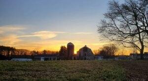 Take An Enchanting Guided Moonlight Hike Through Appleton Farms In Massachusetts