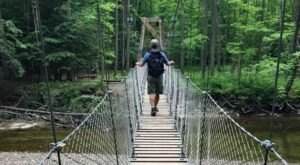 Cross A 90-Foot Swinging Bridge Over Big Creek At Girdled Road Reservation In Ohio