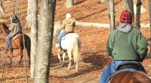 See Rhode Island's Beautiful Lincoln Woods On Horseback With A Tour From Sunset Stables