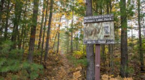 The North Country National Scenic Trail Will Show You A Completely New Side Of Michigan