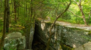 The Gorgeous 1.4-Mile Hike In Illinois' Shawnee National Forest That Will Lead You Past A Natural Bridge