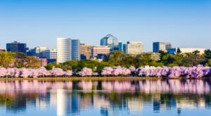 This Unique Day Trip To Arlington, Virginia Is A Must-Do