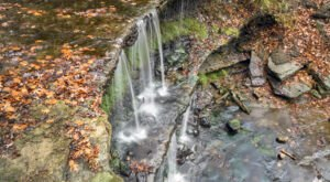 The Falls Vista Trail In West Virginia Is A 1-Mile Out-And-Back Hike With A Waterfall Finish
