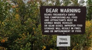Wyoming Is Home To Two Of The Most Dangerous National Parks In The Country, According To A New Study