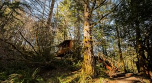 Sleep Underneath The Forest Canopy At This Epic Treehouse In Oregon