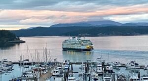 With Year-Round Whale Watching And Incredible Dining, Friday Harbor House In Washington Is The Ultimate Escape
