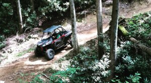 Rent An ATV In Virginia And Go Off-Roading Through The Hills And Trails Of Appalachia
