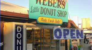 Enjoy Famous Cake Donuts At The Original Weber's Little Donut Shop In Florida
