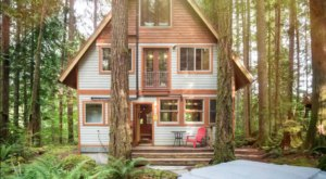 Enjoy A Private Hideaway At The Rustic Industrial Treetop Cabin In Washington
