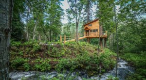 Relax And Unwind In This Quiet Treehouse In Washington Surrounded By 150 Acres Of Nature