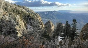 La Luz Trail Is A Gorgeous Forest Trail In New Mexico That Will Take You To A Hidden Overlook