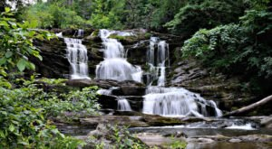 The Conasauga Falls Trail In Tennessee Is A 1.3-Mile Out-And-Back Hike With A Waterfall Finish