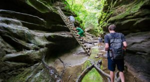 The Gorgeous 1.9-Mile Hike In Indiana's Turkey Run State Park That Will Lead You Past An Emerald Canyon