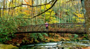 Explore Waterfalls, Mountains, And A River When You Visit South Carolina's Jones Gap State Park