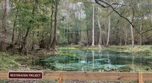 The Gorgeous 1.7-Mile Hike In Florida's Gilchrist Blue Springs That Will Lead You Past 5 Natural Spring Pools