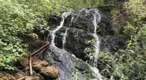 The Clear Creek Trail In New Mexico Is A 4-Mile Out-And-Back Hike With A Waterfall Finish