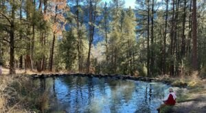 The Gorgeous 3.4-Mile Hike In New Mexico's Santa Fe National Forest That Will Lead You Past A River And Hot Spring