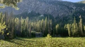 The Gorgeous 1.4-Mile Hike In Idaho's Sawtooth Mountains That Will Lead You Past A Waterfall And Pond