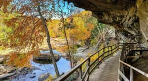 Escape To Audra State Park For A Beautiful West Virginia Nature Scene