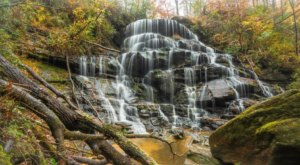 The Yellow Branch Falls Trail In South Carolina Is A 3-Mile Out-And-Back Hike With A Waterfall Finish