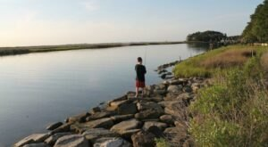 Escape To Janes Island State Park For A Beautiful Maryland Nature Scene
