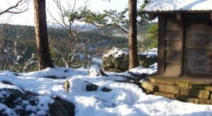 Take A Majestic Winter Hike And Marvel At Frozen Lakes In Robbers Cave State Park In Oklahoma