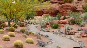 Escape To Red Hills Desert Garden For A Beautiful Utah Nature Scene