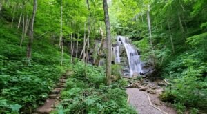 The Gorgeous .5-Mile Hike In Virginia That Will Lead You Past A Waterfall And River