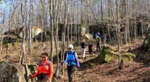 Take A Hike Along These 8 Alabama Trails For The Ultimate Spring Adventure