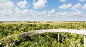 Explore Miles Of Unparalleled Views Of The Everglades On The Scenic Bike Trail In Florida