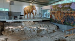 Waco Mammoth National Monument In Texas Brings Ancient History To Life
