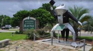 It's Impossible Not To Love The Most Eccentric Town In Louisiana, Rayne