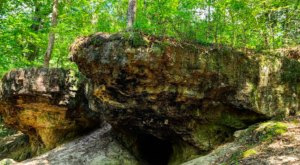 The Wolf Rock Cave Trail Leads To One Of The Only Caves In Louisiana
