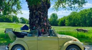The Old Tree Absolutely Covered In Shoes Is An Unexpectedly Charming Kansas Oddity