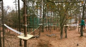 The Massive Aerial Obstacle Course Is Right Here In Georgia At Treetop Quest Adventure Park