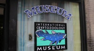 International Cryptozoology Museum In Maine Just Might Be The Strangest Tourist Trap Yet