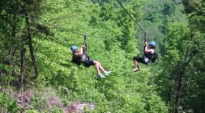 Take A Ride On The Longest Zipline In New Hampshire At Attitash Mountain