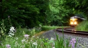 The Cuyahoga Valley Scenic Railroad National Park Scenic Ride Offers Some Of The Most Breathtaking Views In Ohio