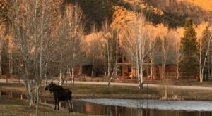 Aspen Grove Inn Is A Rustic Cottage Resort In Idaho That's Just Steps Away From A Trout Pond