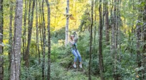 The Largest Zip Line Park In Louisiana Recently Opened And You Need To Visit