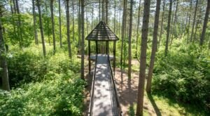 With A Magnificent Treehouse And Peaceful Gardens, An Idyllic Adventure Awaits At Monk Botanical Gardens In Wisconsin