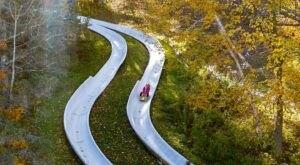 Ride Through Massachusetts On The Epic Mountain Adventure Park Alpine Slide