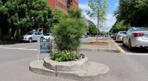 Mill Ends Park Is The World's Smallest Park And Naturally It's In Oregon