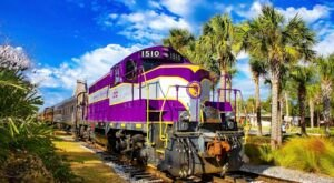 The Royal Palm Railway Offers Some Of The Most Breathtaking Views In Florida