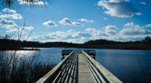 Explore Miles Of Unparalleled Views Of Marshes On The Scenic Prime Hook National Wildlife Refuge Trails In Delaware